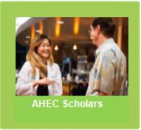 AHEC Scholars Button